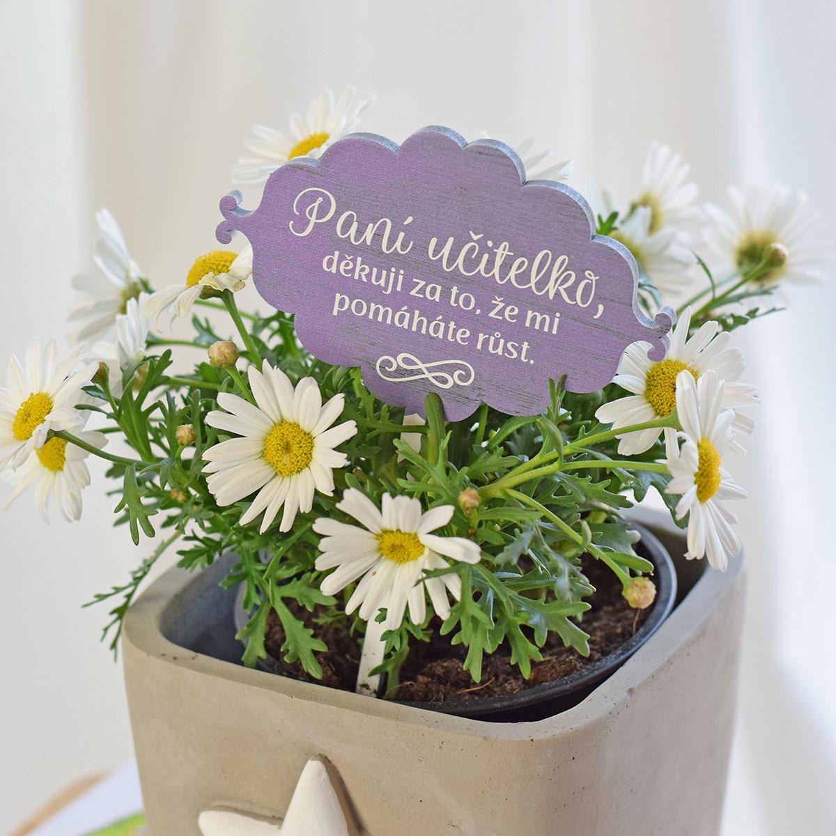 HOUSEDECOR Dřevěný zápich do květináče pro paní učitelku