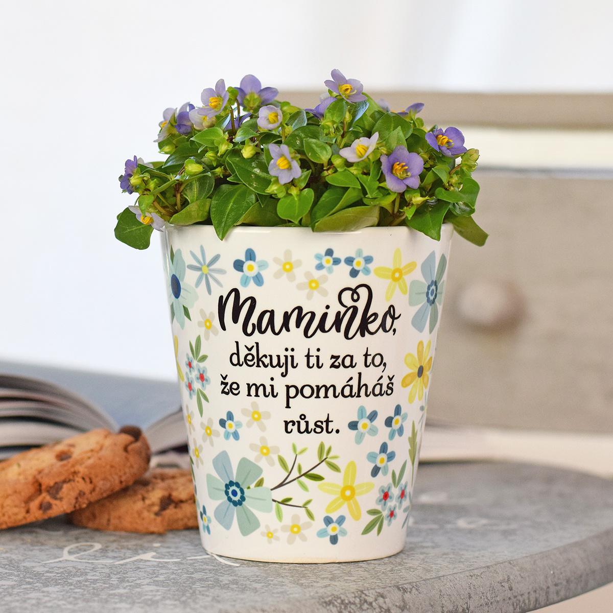 """HOUSEDECOR Květináč pro maminku - """"Maminko, děkuji..."""""""