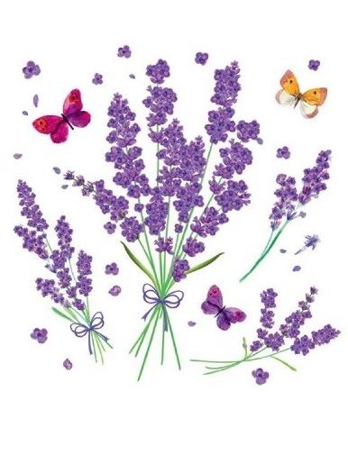 Okenní fólie - levandulové květiny