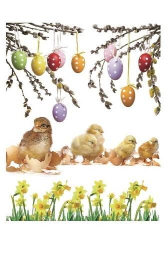 Okenní fólie - vajíčka a kuřátka