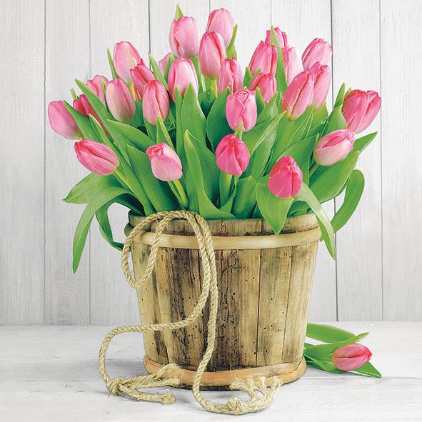 Ubrousky - Tulipánky